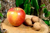 image of wood pieces  - red and yellow apple with nuts on a piece of wood