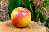 picture of wood pieces  - red and yellow apple on a piece of wood - JPG