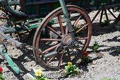 foto of wagon wheel  - Vintage style horse wagon - JPG