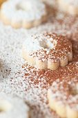 pic of sprinkling  - Closeup of italian canestrelli biscuits sprinkled with powdered sugar and cocoa - JPG