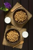 picture of cereal bowl  - Dried berry and oatmeal breakfast cereal in rustic bowls with glasses of milk photographed overhead on dark wood with natural light - JPG
