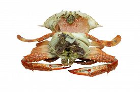 stock photo of cooked blue crab  - Inside streamed - JPG
