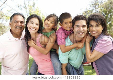 Постер, плакат: Группы расширенной семьи в парке, холст на подрамнике