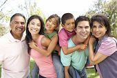 stock photo of family fun  - Extended Family Group In Park - JPG