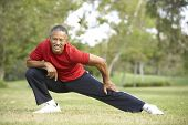 stock photo of stretching exercises  - Senior Man Exercising In Park - JPG