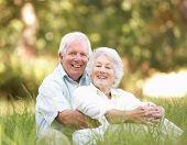 Senior Couple Sitting In Park