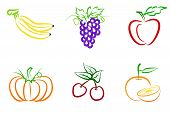 Fruit Line Art