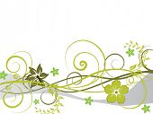 Floral vector background with leaves and flowers