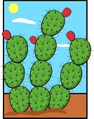 image of nopal  - prickly pear or nopal plant - JPG