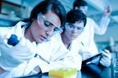 Young scientist dropping liquid in test tubes while her partner is taking notes in a laboratory