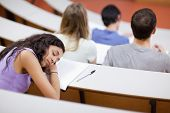 Young student sleeping during a lecture in an amphitheater
