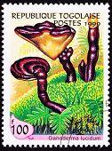 Canceled Togo Postage Stamp Lingzhi Chinese Medicinal Mushroom Ganoderma Lucidum