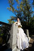 Beautiful Bride In A Wedding Dress In Park