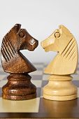 Black And White Horse Chess