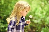 Childhood, Future, Growth Concept. Child Blow Dandelion In Spring Or Summer Park. Freedom, Activity, poster