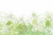 Vector Field With Outline Cannabis Sativa Or Cannabis Indica Or Marijuana. Branch, Leaves And Seed O poster