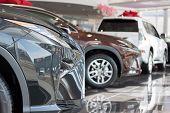 Car Auto Dealership. Themed Blur Background With Bokeh Effect. New Cars At Dealer Showroom. Prestigi poster