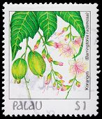A 1-dollar Stamp Printed In Palau