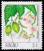A 1-dollar Stamp Printed In Palau