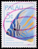 A 5-cent Stamp Printed In Palau