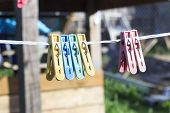Clothespin Yellow. Hang On The Linen Gum. There Are Other Clothespins Of A Dye Color. poster