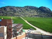 Estate Winery Construction
