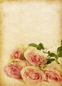 old grunge background with roses. paper texture