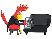 Cartoon Character Funny Parrot Isolated on White Background. Pianist. Vector EPS 10.