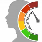 Hormone Testosterone Level Measuring Scale. Health Care Concept Illustration. Head Of Man Silhouette poster