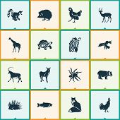 Fauna Icons Set With Antelope, Giraffe, Turtle And Other Primate Elements. Isolated Illustration Fau poster