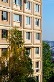 Light Beige Facade Of A Residential Building Against The Background Of High-rise Buildings. Birch In poster