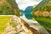 View On Fjord Sognefjord, Gudvangen Norway poster