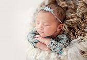 Lovely newborn comfortable sleeping in basket poster
