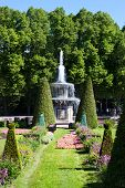 Roman Fountain In Peterhof