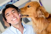 foto of licking  - Golden retriever licking his owner in the face as a sign of affection - JPG