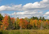 Autumn Fire Tower