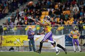 VIENNA, AUSTRIA - MAY 13: WR Laurinho Walch (#81 Vikings) catches the ball on May 13, 2012 in Vienna