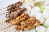 Mutton And Chicken Satay Dish Closeup