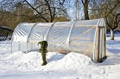 Handmade Polythene Greenhouse For Vegetable  In Winter