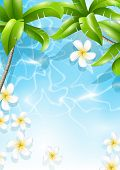 Frangipani flowers in the sea water under palm leaves. Tropical design