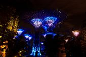 Garden By The Bay7