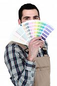Decorator with a color chart