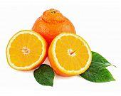 Fresh Orange Fruit With Green Leaves Isolated On White Background.