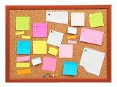 Colorful Cork Board