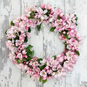pic of apple blossom  - Apple flower blossom wreath over old distressed wooden background - JPG