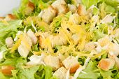Caesar salad on white plate, close up