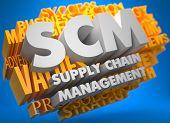 SCM. Business Concept.