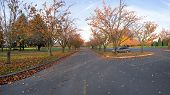 Parking Lot And Road Panorama In A Park Oregon.