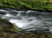 Autumn River Kamenice