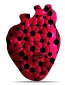 Heart care concept